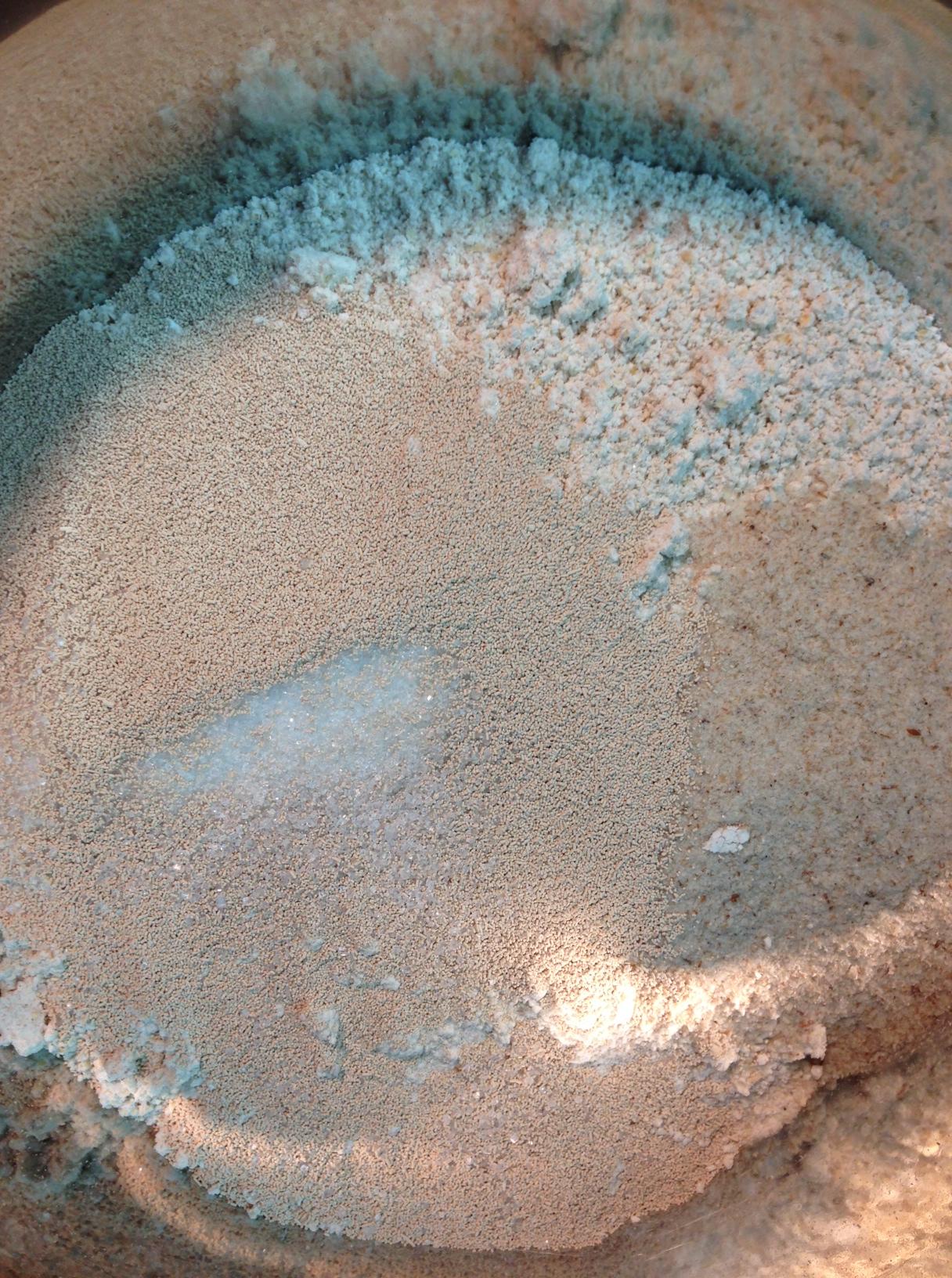 Instant Ocean Salt Mix Ratio : Baguette improved recipe for home