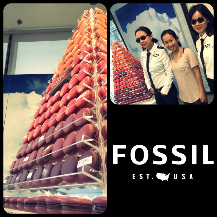 Macaron Tower Fossil Hong Kong
